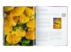 Wielka księga roślin pokojowych - Kompendium wiedzy