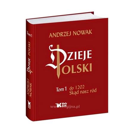 Dzieje Polski. Tom 1 - Andrzej Nowak : Książka